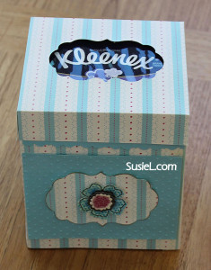 IMG_2073-tissue-box-only